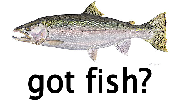 Water for Endangered Salmon Or UCSC Growth?
