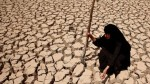 A woman in Iraq inspects her once-fertile, now-parched land. Drought is decimating agriculture in Iraq and making it impossible for many farmers to remain on their land (Source: Hadi Mizban, AP.)