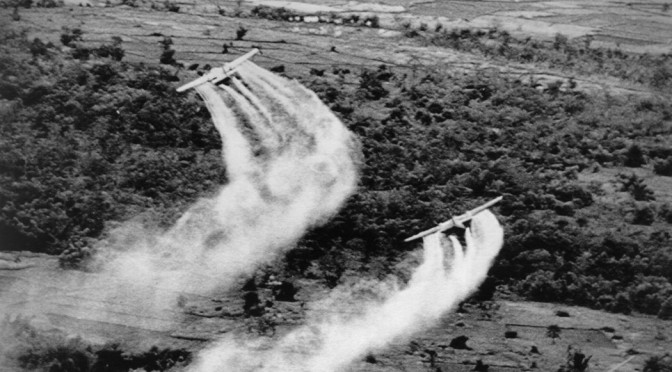 Agent Orange's Long Legacy, For Vietnam And Veterans